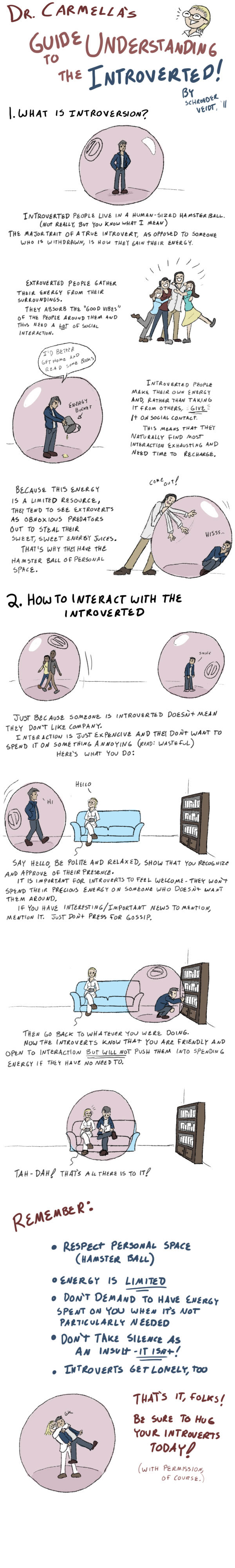 how_to_live_with_introverts_by_sveidt-d4tfoyo
